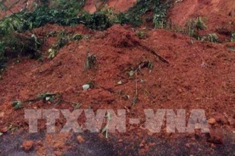 Nghệ An: Nhiều tuyến đường ở miền núi bị ách tắc do ngập nước