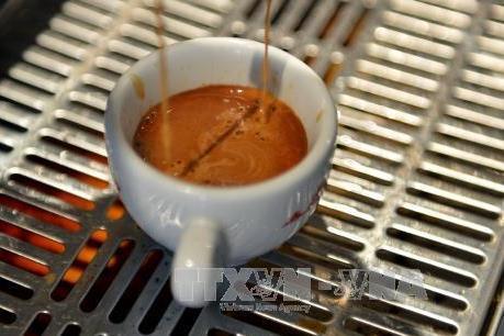 Cà phê sẽ bị cấm bán tại các trường học của Hàn Quốc