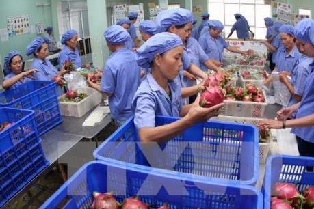 Làm gì để nông sản Việt giữ được thị trường?