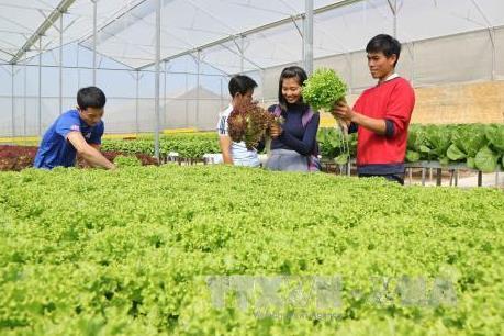 Gian nan cho vay nông nghiệp công nghệ cao