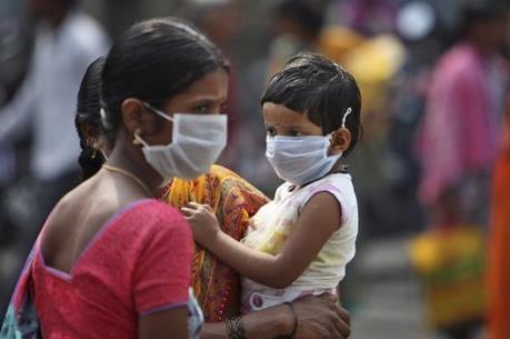 Dịch cúm lợn bùng phát tại Ấn Độ