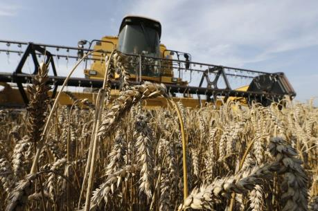 Danh nghiệp Mỹ muỗn mở rộng quan hệ thương mại nông sản với Cuba