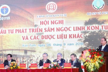 Thủ tướng: Bảo hộ giá trị thương hiệu sâm Ngọc Linh như thương hiệu quốc gia Việt Nam