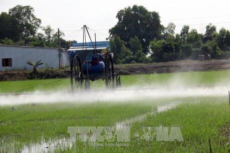 Sẽ sớm loại bỏ hoạt chất Glyphosate trong thuốc bảo vệ thực vật
