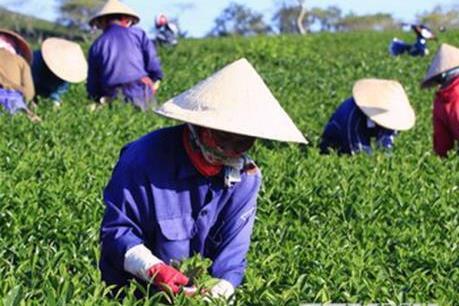 WEF ASEAN 2018: Hướng tới mục tiêu tăng trưởng bền vững nông nghiệp Việt Nam