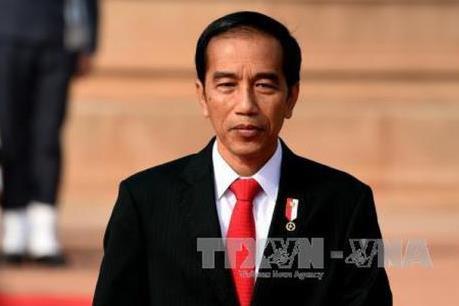 Indonesia: Thời cơ cải cách kinh tế sau bầu cử