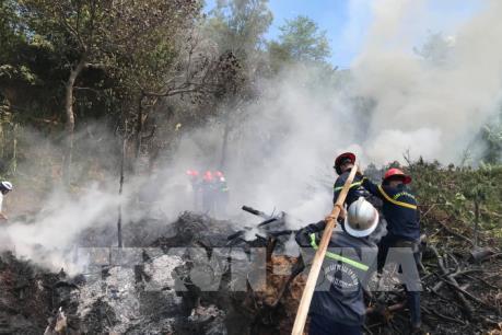Cháy tại khu vực Suối Đá, bán đảo Sơn Trà
