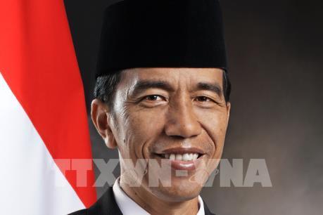 Tổng thống Cộng hòa Indonesia và Phu nhân bắt đầu thăm cấp Nhà nước Việt Nam