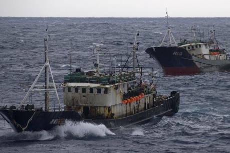 Hàn Quốc chia sẻ với Việt Nam kinh nghiệm quản lý ngư nghiệp