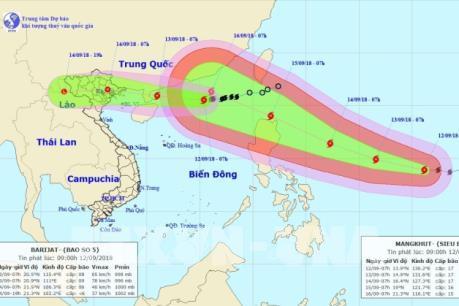 Quảng Ninh cấm biển từ 6 giờ ngày 13/9 để chống bão