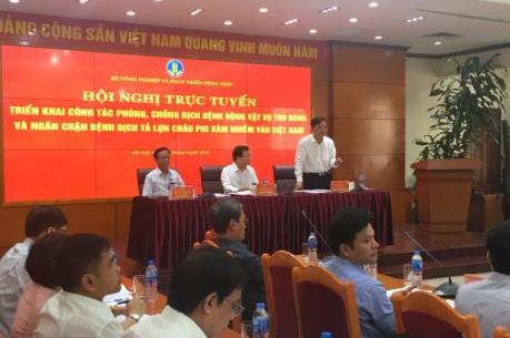 Lạng Sơn: Nguy cơ cao bị xâm nhiễm dịch tả lợn Châu Phi