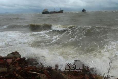 Hải Phòng yêu cầu chủ tàu thuyền di chuyển ngay về nơi trú bão an toàn