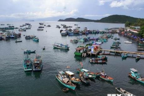 """Việt Nam khắc phục """"thẻ vàng"""" để hình thành nghề cá bền vững"""