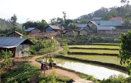 Thủ tướng có ý kiến về việc ổn định dân di cư tự do tại Lâm Đồng