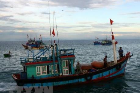 8 tỉnh hợp tác quản lý tàu cá hoạt động khai thác thủy sản trên biển