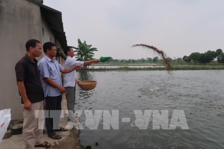 Thu nhập tăng gấp 6, 7 lần nhờ nuôi trồng thủy sản