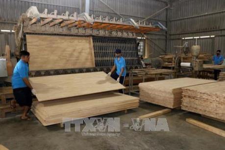 Cao su Việt Nam đáp ứng yêu cầu ngày càng cao của thị trường