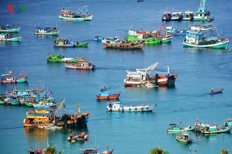 Điều chỉnh cục bộ quy hoạch Cảng nước sâu Nam Du