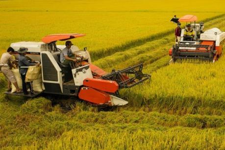 Khuyến khích doanh nghiệp đầu tư vào nông nghiệp