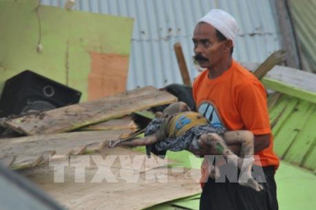 Động đất, sóng thần tại Indonesia: Số người thiệt mạng vượt quá 830 người