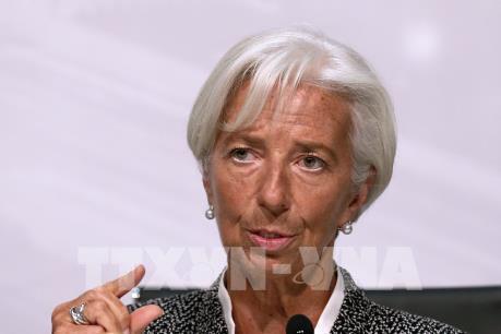 Các nước châu Phi tìm kiếm nguồn tài trợ từ IMF