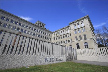 WTO: Công nghệ kỹ thuật số tác động tích cực tới thương mại toàn cầu