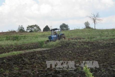 Nghệ An: Hơn 10.000 ha đất lâm nghiệp bị mua bán, chuyển nhượng trái phép