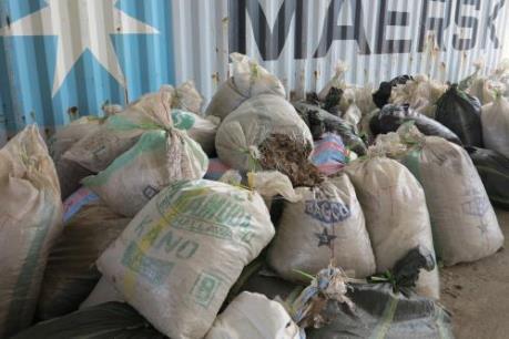 Thu giữ gần 1,4 tấn vảy tê tê và hơn 100 kg ngà voi