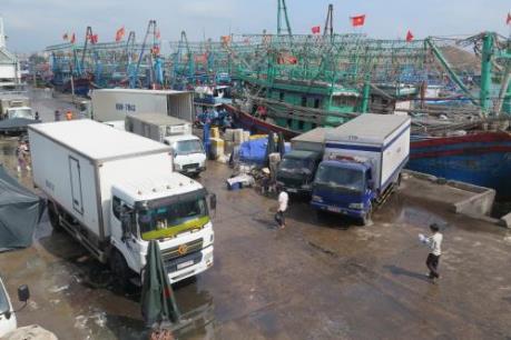 Chồng chéo quy hoạch cảng tại Quy Nhơn - Bài 1: San lấp mặt nước, tàu thuyền neo đậu khó