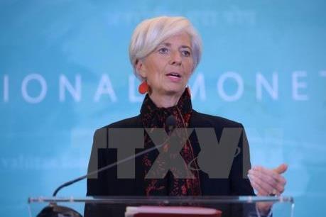 IMF cảnh báo tương lai các nước theo chủ nghĩa đơn phương