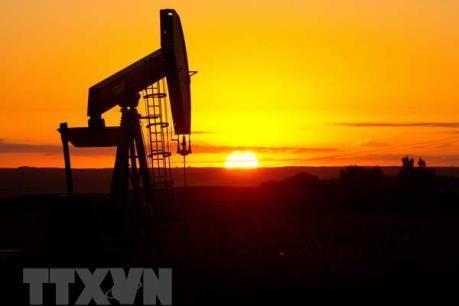 Cơ quan Năng lượng Quốc tế hạ dự báo nhu cầu dầu mỏ