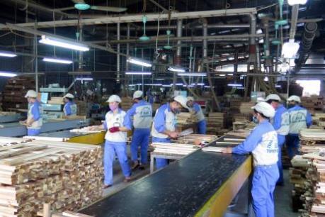 Chứng chỉ nguyên liệu gỗ - Bài cuối: Chiến lược mới để phát triển