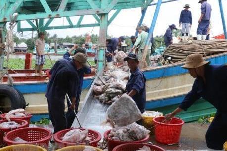 """Khắc phục """"thẻ vàng"""" IUU - Bài 2: Hướng tới xây dựng nghề cá bền vững"""
