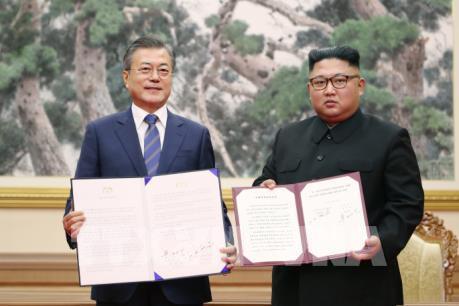 Hai miền Triều Tiên thảo luận về hợp tác lâm nghiệp