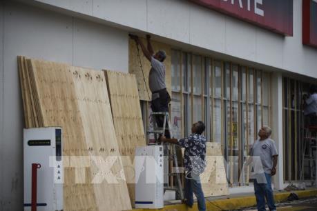 Người dân Mexico chuẩn bị chống bão Willa