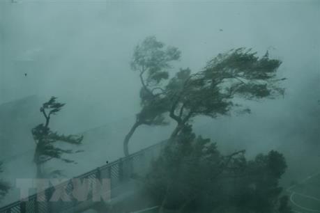 Tin mới nhất bão YUTU tại Philippines