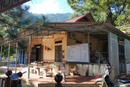 Vi phạm quản lý đất rừng phòng hộ Sóc Sơn: Tạm đình chỉ một Chủ tịch xã