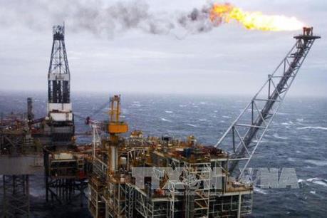 Giá dầu thế giới ngày 7/11 đi xuống