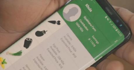 Nông dân Nam Phi ứng dụng điện thoại nâng cao hiệu quả tiêu thụ nông sản