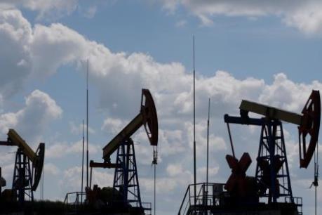 Hàn Quốc trở thành nước đứng thứ hai thế giới về nhập khẩu dầu thô Mỹ