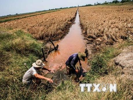 Trung Quốc kêu gọi tăng cường hợp tác nông nghiệp