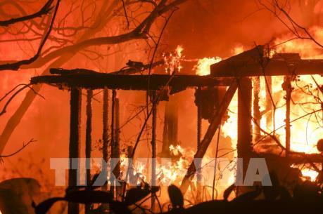 ĐSQ Việt Nam tại Mỹ thông tin về tình hình người Việt trong vụ cháy rừng tại California