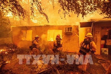 Hơn 30 người thiệt mạng do cháy rừng ở bang California