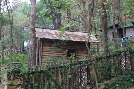 Bắt đầu cưỡng chế công trình vi phạm trên rừng Sóc Sơn