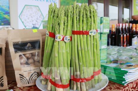 Ninh Thuận công bố 12 sản phẩm đặc thù của địa phương