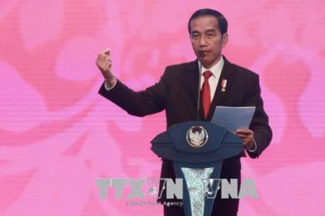 Triển vọng phát triển kinh tế của Indonesia trong năm 2019