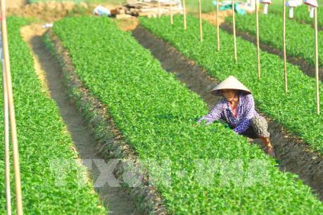 Hà Nội - Ninh Bình thúc đẩy hợp tác phát triển kinh tế