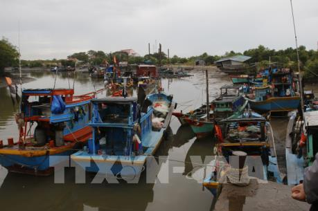 Trưa 24/11, Tp. Hồ Chí Minh hoàn thành việc phòng chống cơn bão số 9