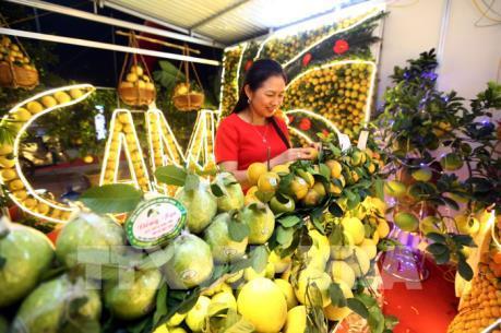 Khai mạc hội chợ cam, bưởi và các sản phẩm đặc trưng Lục Ngạn