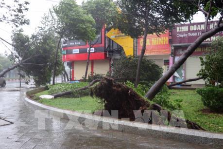 Bà Rịa-Vũng Tàu: Mưa và gió vẫn giật mạnh do ảnh hưởng bão số 9